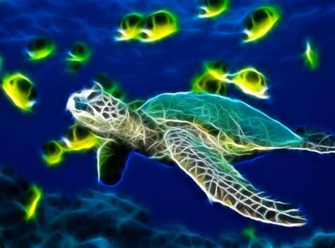 Sea Turtle Animated Wallpaper - turtle photos photo gallery desktop wallpaper