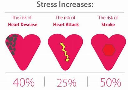 Stress Exercise Heart Disease Bellicon Due Regular