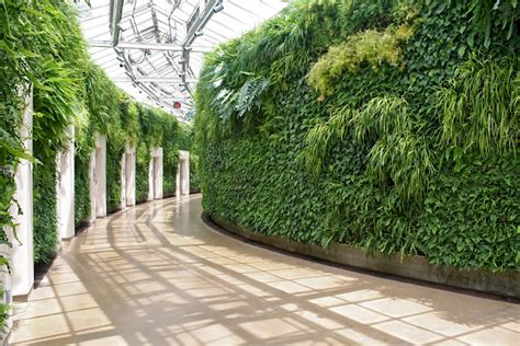 The History Of Living Walls-living Walls And Vertical