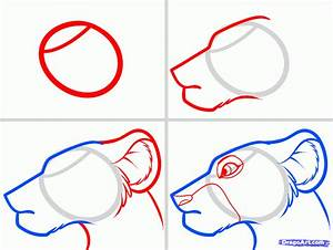 How to Draw Nala Easy, Step by Step, Disney Characters ...