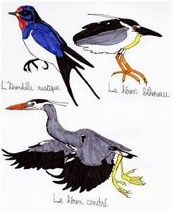 Aero Les Ulis : forain fran ois verdier de leguevin ~ Maxctalentgroup.com Avis de Voitures