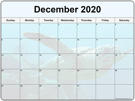 collection december photo calendars image filters