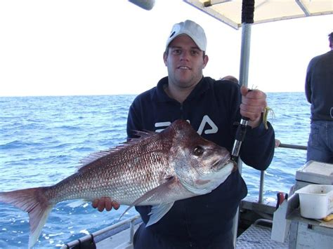 Fishing Boat Charters Hervey Bay by Hervey Bay Fishing Charters Kj Hervey Bay Queensland