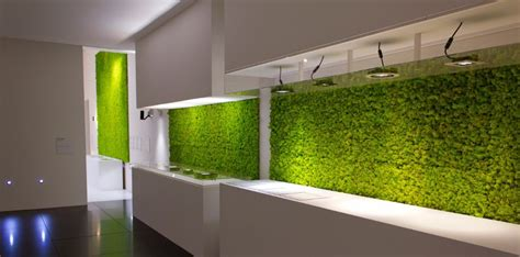 latest trend  green houses moss walls