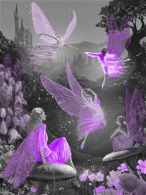 purple fairies pictures   images  facebook