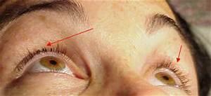 Eyelash Extensions Arizona