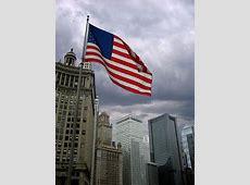 US Flag on Chicago Skyline Eyeflarecom