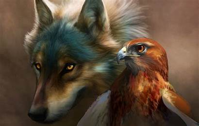 Wolf Eagle Head Wallpapers Cool Painting Drawn