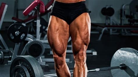 quadriceps quad muscles femoris strong exercises bodybuilding anatomy training muscle wizard quads rated massive strength building exercise