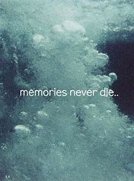 Best Memory Quotes Ideas And Images On Bing Find What Youll Love