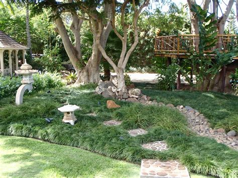 small landscape plants small landscape ideas no grass modern front yard
