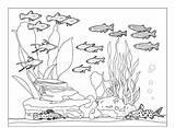 Coloring Pages Tank Aquarium Fish Community Underwater Sea Fishes Water Animals Nature Preschool Ocean Whith Cat Creatures Popular sketch template