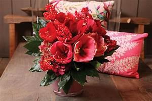 Amaryllis Zum Blühen Bringen : amaryllis als schnittblume ~ Lizthompson.info Haus und Dekorationen