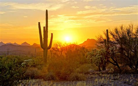 Top Picture by Things You Must About Retiring To Arizona