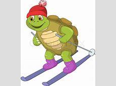 Lustigen Schildkröte Skifahren Vektorgrafik Colourbox
