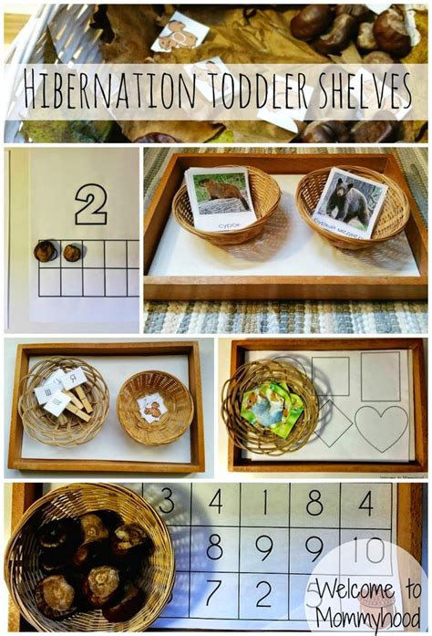 science activities for preschoolers and toddlers 502 | 1c8107850d19c02377d968d35563b819