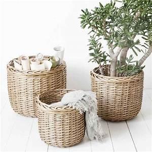 Große übertöpfe Für Zimmerpflanzen : die besten 25 gro e zimmerpflanzen ideen auf pinterest tropische zimmerpflanzen ~ Bigdaddyawards.com Haus und Dekorationen