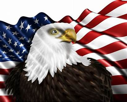Eagle American Flag Americans Sticker Symbol Mobile