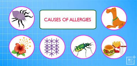 Allergy Types, Symptoms And Treatment. Low Cost Auto Insurance Illinois. Online School Degree Programs. How To Incorporate A Company. Barbados Holiday Villas Primary Medical Doctor. Impersonating A Marine Cheap Reseller Hosting. Apply For Multiple Credit Cards. Cheap Car Insurance For Young Adults. Shared Office Space San Jose Top Ipad Uses