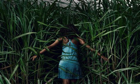 tall grass official trailer  adaptation