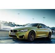 The 15 Best BMW M Cars  As Voted By Readers