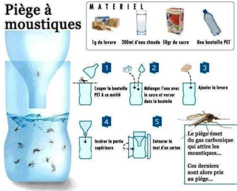 fabriquer un pi 232 ge 224 moustiques et mouches astuces