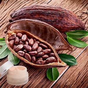 Kakaobutter Selber Machen : lippenpflege rezept lippenbalsam mit kakaobutter selber machen ~ Frokenaadalensverden.com Haus und Dekorationen