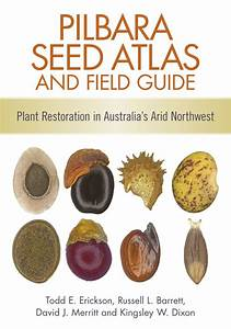 Pilbara Seed Atlas And Field Guide  Plant Restoration In