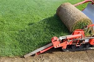 Gazon En Rouleaux : achat et vente de gazon naturel en rouleau avec bogazon ~ Farleysfitness.com Idées de Décoration