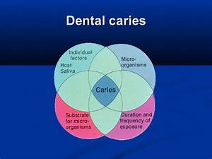 Caries Prevention I