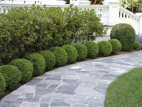 planting ideas front yard landscaping design small