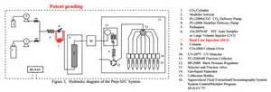 Novel Injection Method In Preparative Supercritical Fluid