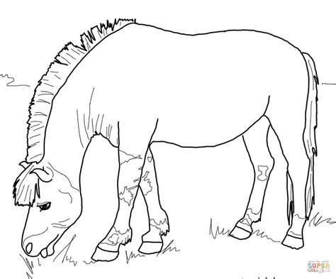 89 Coloring Pages Of Bucking Horses Bucking Horse