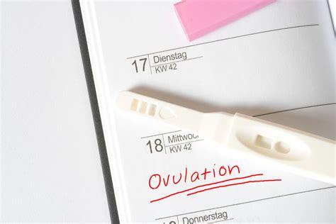 ovulation test bfp negative opk meaning pregnant stand does gyn ob explains turn should similar