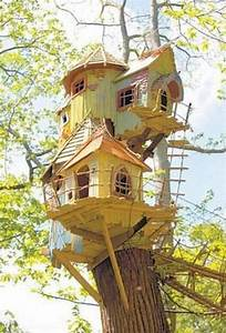 Tree, Houses, For, Adults