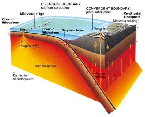 Earthquake Diagram  Diagram Site. How Much Would I Pay For A Mortgage. Lincoln Benefit Life Annuities. Electrician Little Rock Ar Refiance Car Loan. Nevada Business Registration Form. Personal Interest Rates Best Blog Web Hosting. Skin Treatment For Acne Heritage Harbor Rehab. Flood Restoration Denver Home Insurance Forms. Marriage And Family Therapy Programs