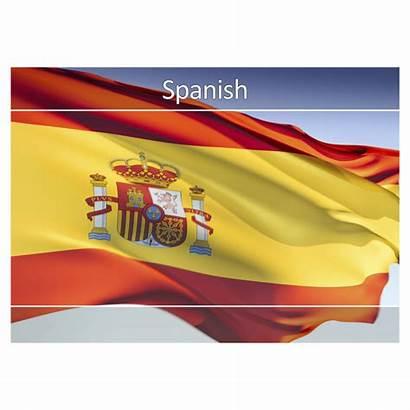 Spanish Postcards Praise Excellent Flag Department Views