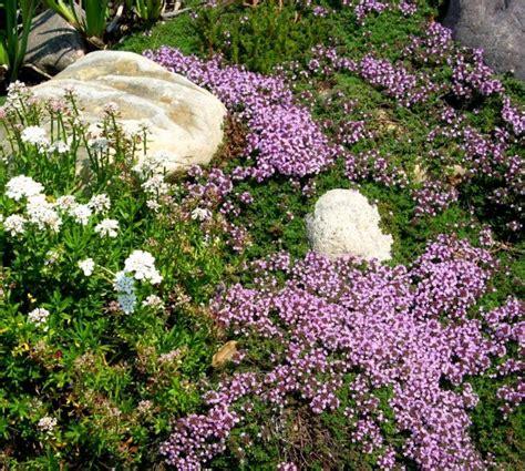 Garten Gestalten Ohne Viel Geld by 55 G 252 Nstige Gartenideen Einen Sch 246 Nen Garten Mit Wenig