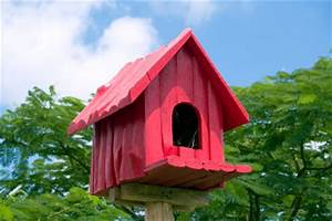 Vogelhaus Bauen Mit Kindern : ein vogelhaus bauen mit kindern ~ Lizthompson.info Haus und Dekorationen