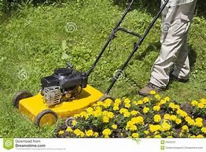 Tondeuse Petite Surface : man with yellow lawn mower stock image image 25232121 ~ Premium-room.com Idées de Décoration