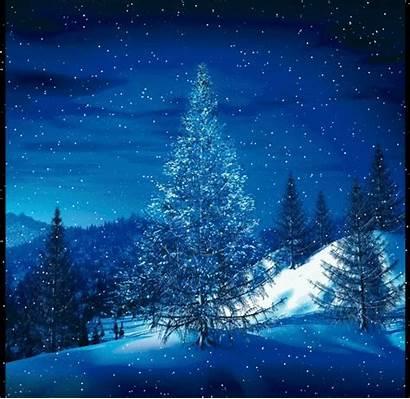 Christmas Grace Tree Fragments Snow