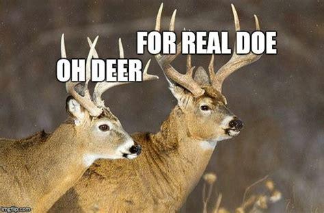 deer puns imgflip