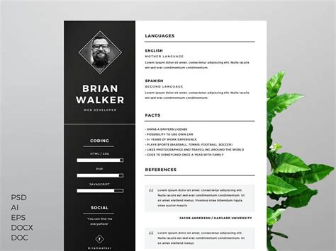 resume templates  word   examples