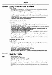 Kitchen Steward Resume Airport Agent Resume Samples Velvet Jobs