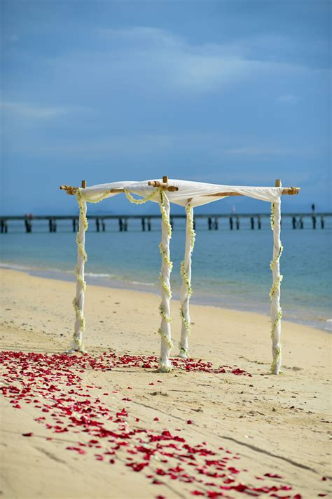 clearwater beach  st pete beach florida weddings