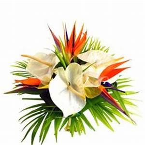 filao est un magnifique bouquet exotique tout en hauteur With affiche chambre bébé avec composition fleurs exotiques