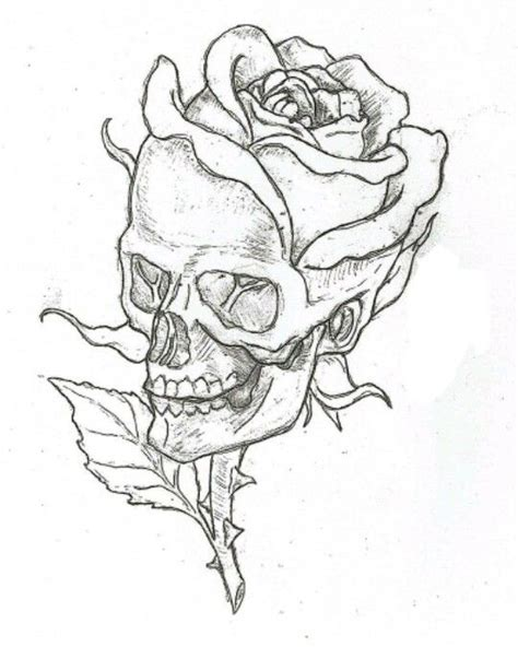 Skull Drawing Draw Drawings Rose Freetoedit