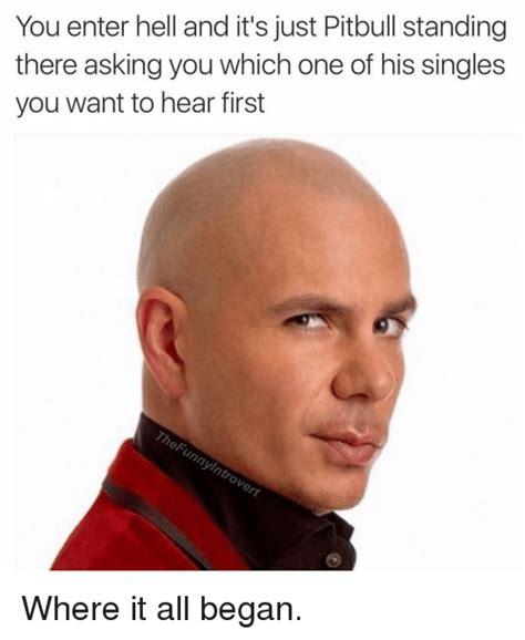 Pitbull Meme - funny pitbull memes of 2017 on sizzle pitbull meme