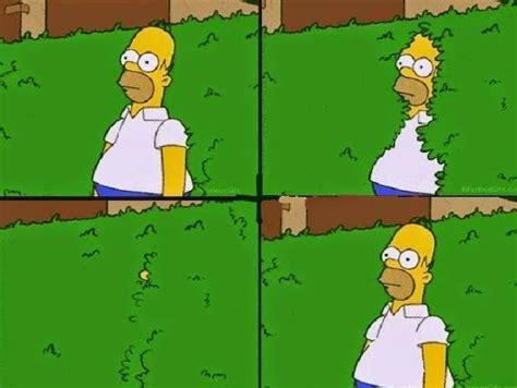 Homer Simpson Meme - meme template search imgflip