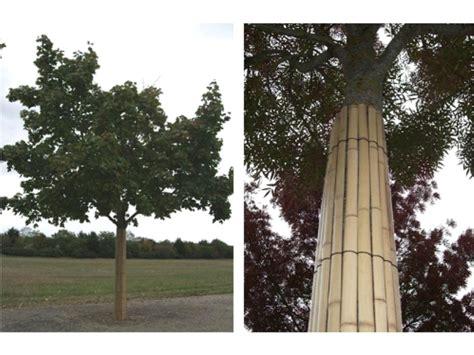 tronc de bambou decoratif tronc de bambou decoratif 28 images bambou ext 233 rieur tronc fin artificiel r 233 sistant